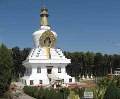 Dhanaulti Package Tour
