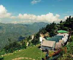 Tour Package In Dhanaulti