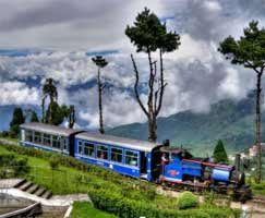 Holiday Package Dhanaulti