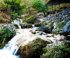 Dhanaulti Tourism Honeymoon