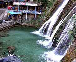 Dhanaulti Vacation Package